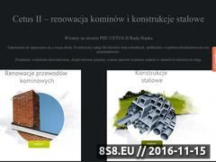 Miniaturka domeny www.cetus2.pl
