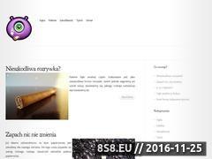 Miniaturka domeny www.chemineesgodin.pl