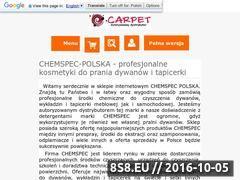 Miniaturka domeny chemspec-polska.pl