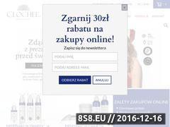 Miniaturka domeny clochee.com