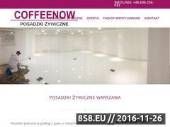 Miniaturka domeny coffeenow.pl
