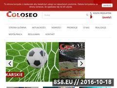 Miniaturka domeny www.coloseo.pl