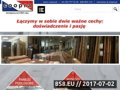 Miniaturka coopra.pl (Drzwi wejściowe)