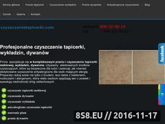 Miniaturka domeny cracowclean.pl