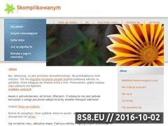Miniaturka domeny www.csin.pl