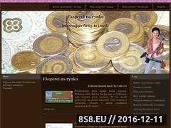 Miniaturka domeny www.csintelekt.pl