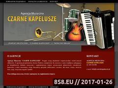 Miniaturka domeny www.czarnekapelusze.pl