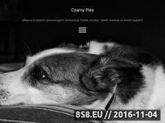 Miniaturka domeny www.czarnypies.pl