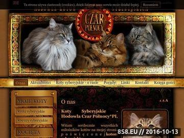 Zrzut strony Hodowla kotów syberyjskich Czar Północy*PL