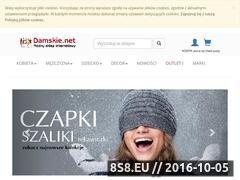 Miniaturka domeny damskie.net