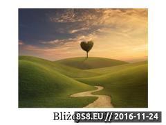 Miniaturka domeny www.danutadlugosz.pl