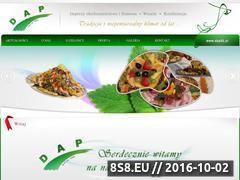 Miniaturka domeny www.dap92.pl