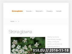 Miniaturka domeny www.dessire.pl