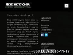 Miniaturka domeny detektyw-sektor.pl