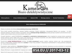 Miniaturka domeny www.detektywi.szczecin.pl