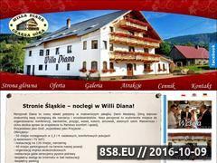 Miniaturka domeny diananoclegi.pl