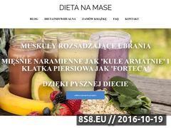 Miniaturka Strona z książką kucharską oraz dietą na masę (dietanamase.pl)