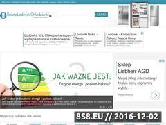 Miniaturka domeny www.dobrelodowkichlodziarki.pl