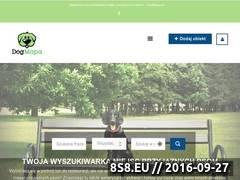 Miniaturka dogmapa.pl (Wyszukiwarka miejsc przyjaznych psom)