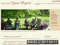 Miniaturka domeny domseniora-zielonewzgorze.pl
