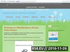 Miniaturka domeny doradzamywodomierze.pl