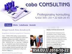 Miniaturka domeny www.doradztwobiznesowe.waw.pl