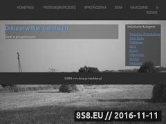 Miniaturka domeny dotacje-lubelskie.pl