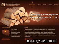 Miniaturka domeny drewnakominkowe.pl