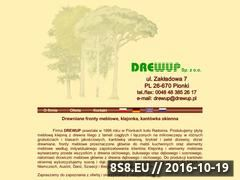 Miniaturka domeny www.drewup.pl