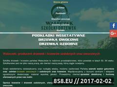 Miniaturka domeny www.drzewkawaleczek.pl