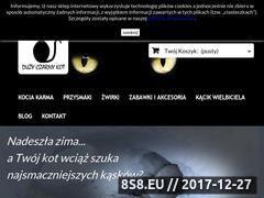 Miniaturka duzyczarnykot.pl (Sklep internetowy z artykułami dla kotów)