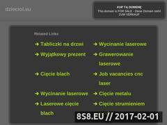 Miniaturka domeny dzieciol.eu
