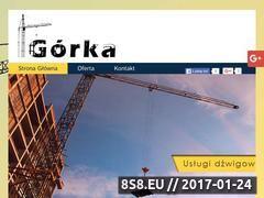 Miniaturka domeny dzwigigorka.pl