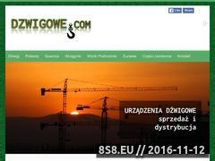 Miniaturka domeny dzwigowe.com