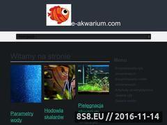 Miniaturka domeny www.e-akwarium.com