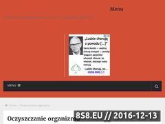 Miniaturka domeny www.e-detox.pl