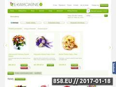 Miniaturka domeny e-kwiaciarnie.pl
