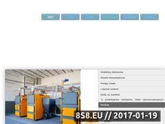 Miniaturka domeny e-nowator.pl