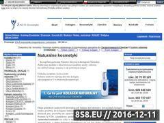 Miniaturka domeny www.e-salem.pl