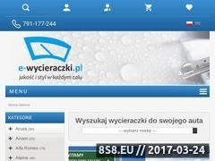 Miniaturka domeny e-wycieraczki.pl