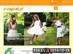 Miniaturka domeny e-zygzak.pl