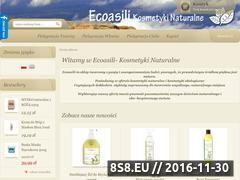 Miniaturka domeny ecoasili.pl