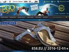 Miniaturka domeny www.ego-sport.pl