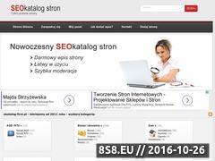 Miniaturka domeny www.ekatalog-firm.pl