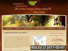 Miniaturka domeny www.ekogroszek.biz