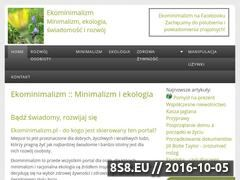 Miniaturka ekominimalizm.pl (Minimalizm, ekologia, rozwój osobisty - EkoMinimalizm)