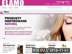 Miniaturka domeny elamo.pl