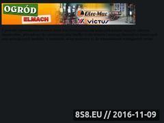Miniaturka domeny www.elmach.sklepna5.pl