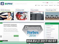 Miniaturka domeny elpigaz.com