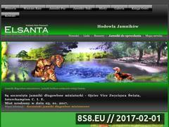 Miniaturka domeny elsanta.pl